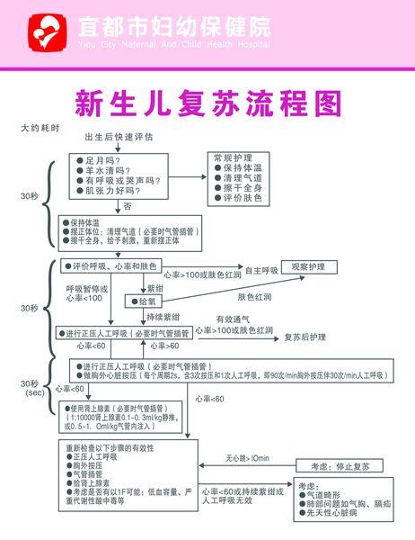 新生儿复苏流程图副本.jpg